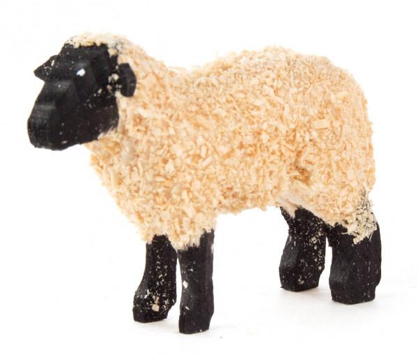 Dregeno Erzgebirge - Schaf groß schwarz