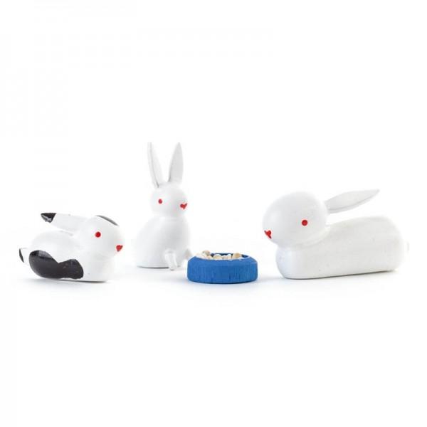 Dregeno Erzgebirge - Miniatur-Kaninchenfamilie