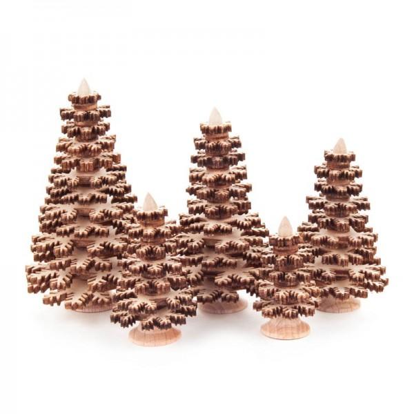 Dregeno Erzgebirge - Miniatur-Nadelbäume, natur, 5-teilig