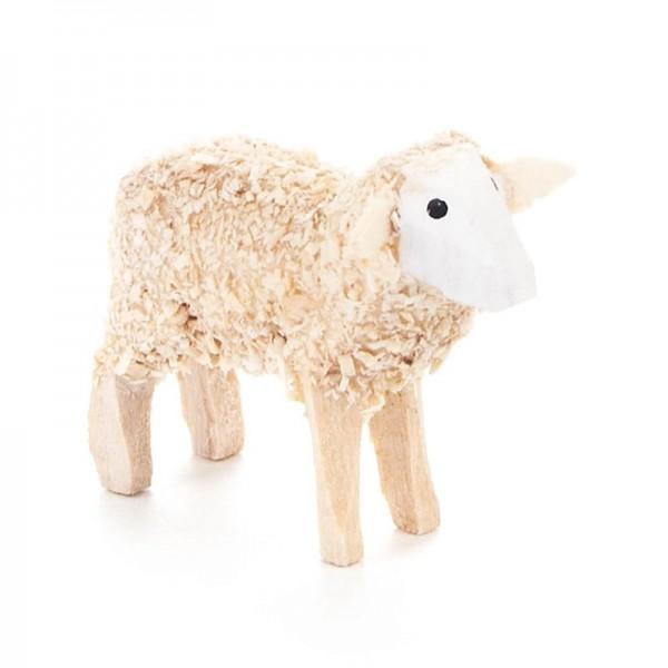 Dregeno Erzgebirge - Miniatur-Schaf, mittelgroß, weiß