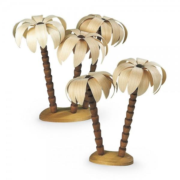 Müller Palmengruppen natur