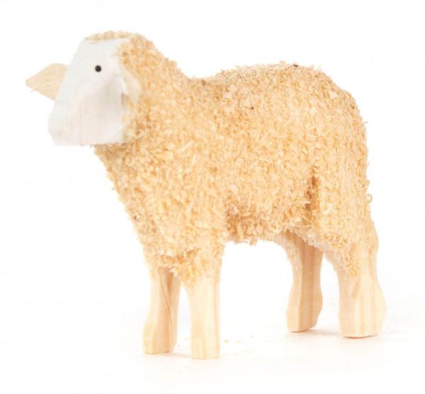 Dregeno Erzgebirge - Schaf stehend, Rückenhöhe 35mm